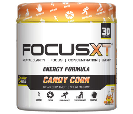 Focus XT Review – 12 Facts You Need to Know