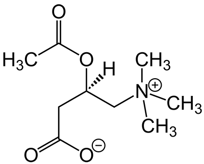 acetyl-l-carnitine