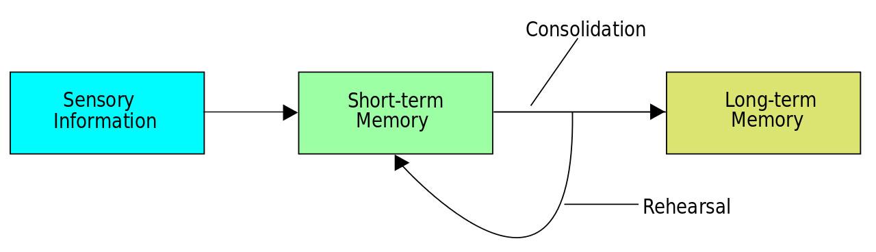 memory building process